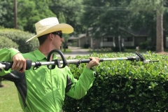 Port Neches, Tx Lawn Care