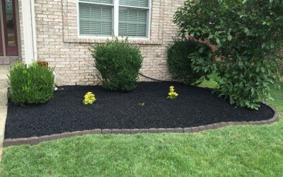DIY: Time For Mulch?